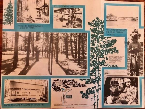 1980's Brochure